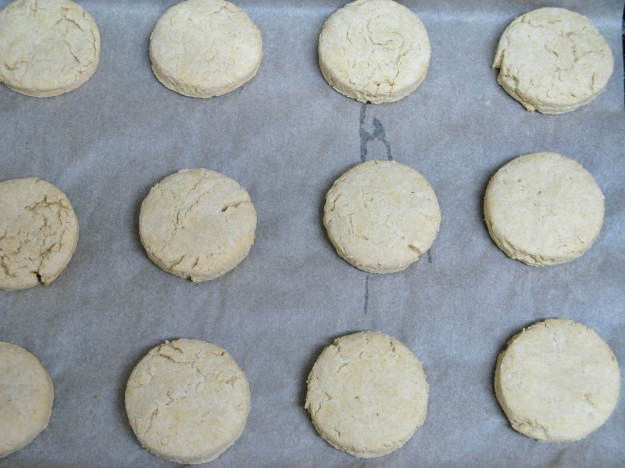 New and Improved Gluten-Free Baking Powder Biscuits | Z's Cup of Tea